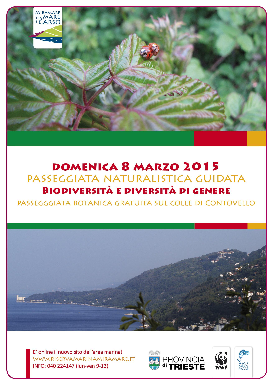 locandina carso web 8marzo2015