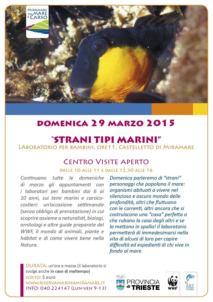locandina mare 29 marzo2015