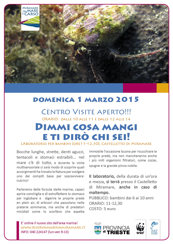 locandina mare web 1marzo2015