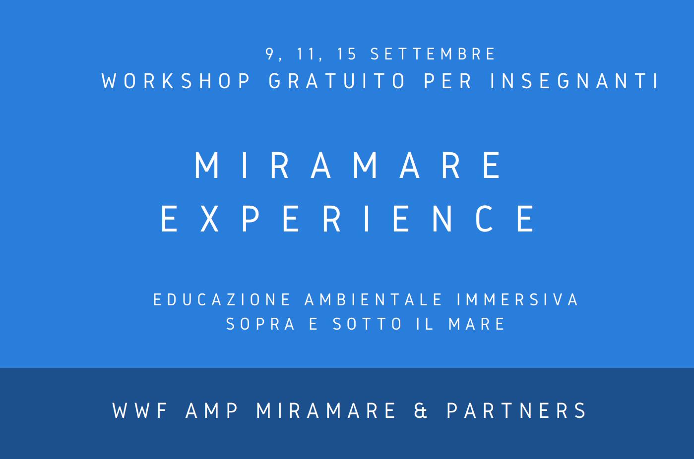 banner sito workshop