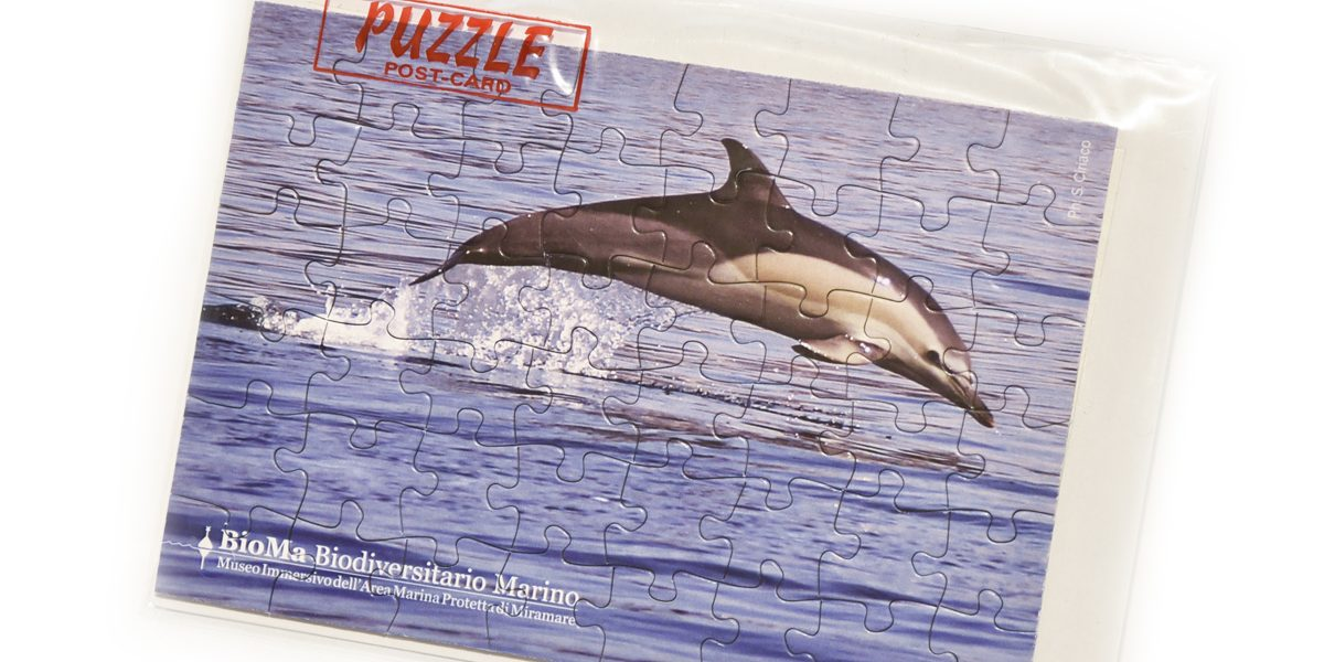 gadget_puzzle