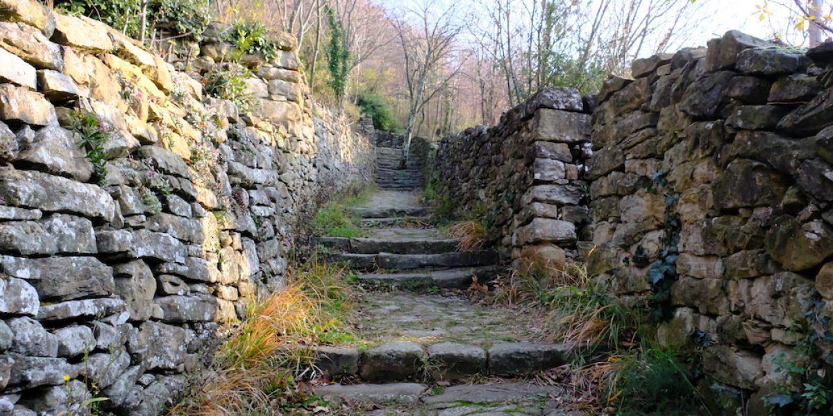 sentiero_natura_ms