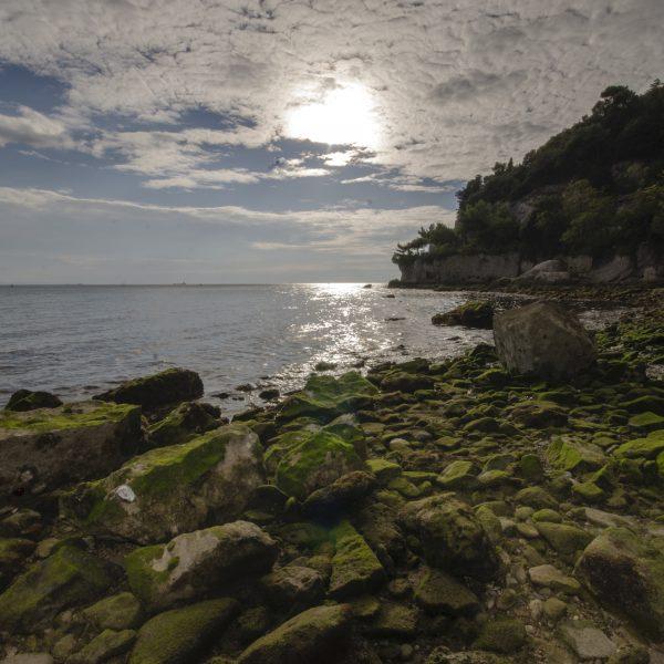 spiaggia_di_AMP_miramare